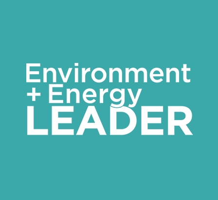 2021 Top Project Award, Environment + Energy Leader