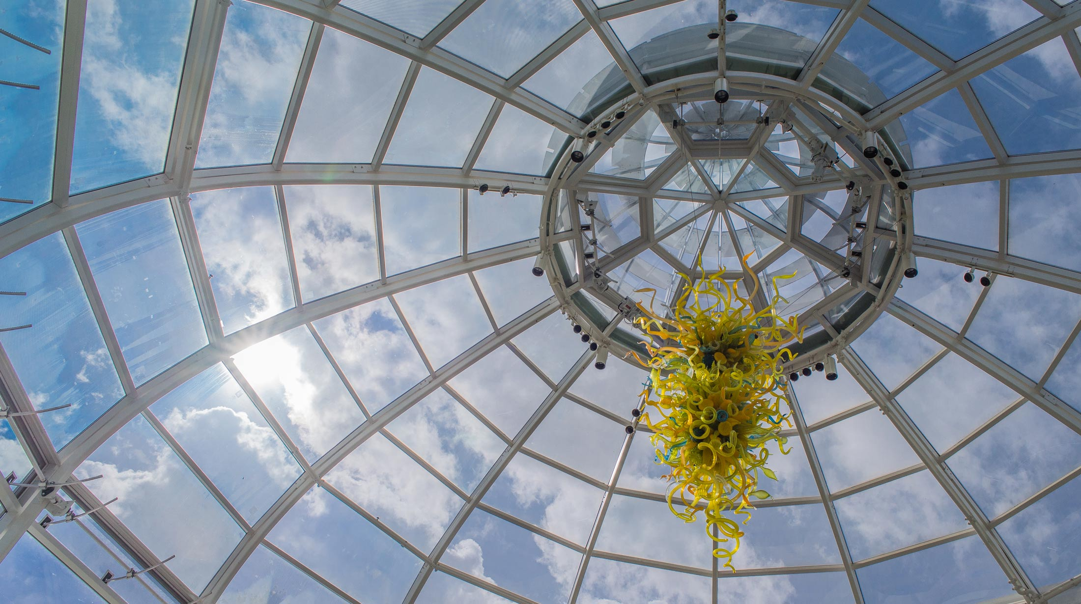 Glass art phipps conservatory and botanical gardens pittsburgh pa designed to hang from the glass domed entrance of our welcome center this goldenrod teal and citron chandelier created by dale chihuly was purchased with arubaitofo Image collections