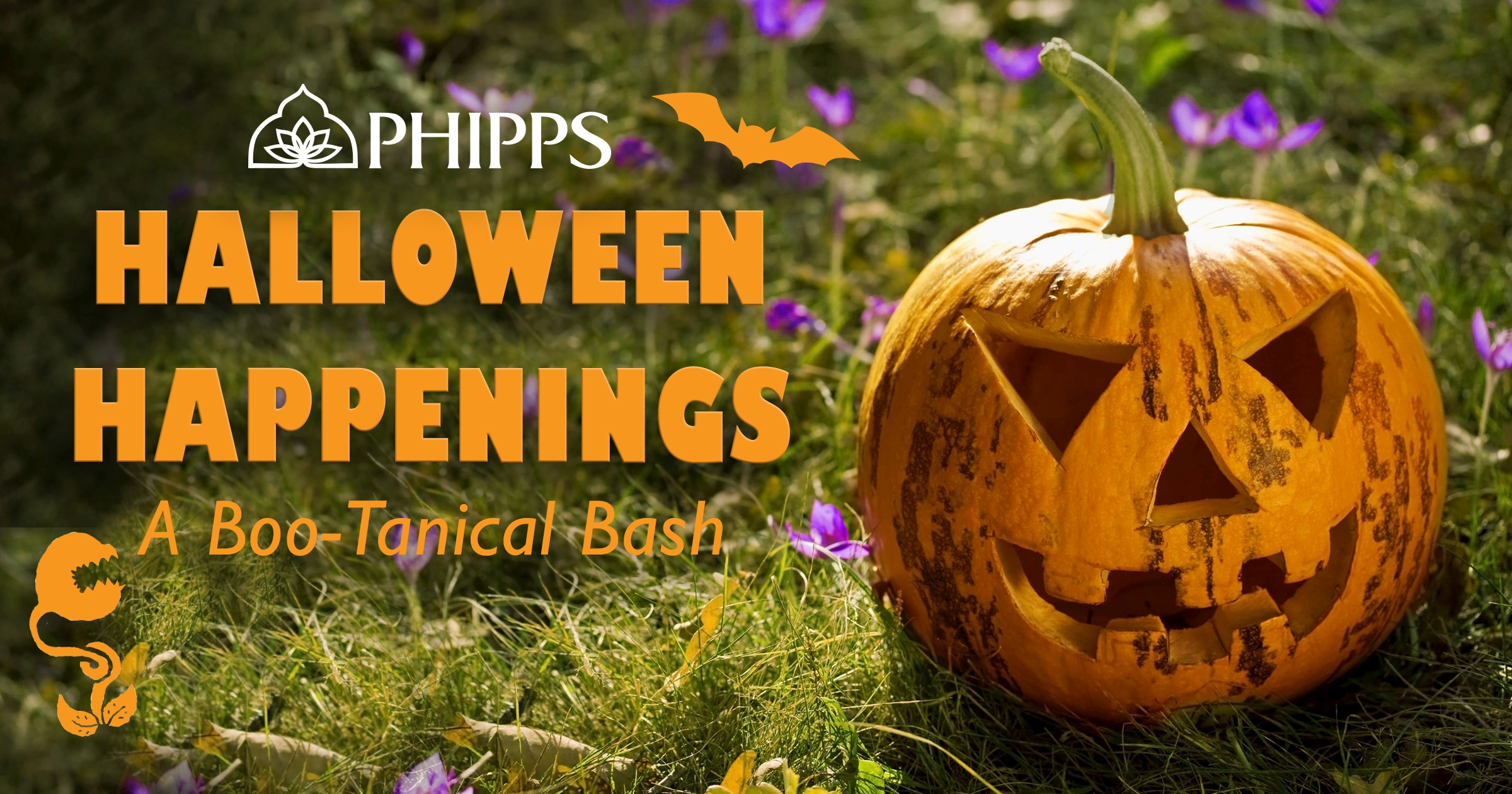 halloween happenings | phipps conservatory and botanical gardens