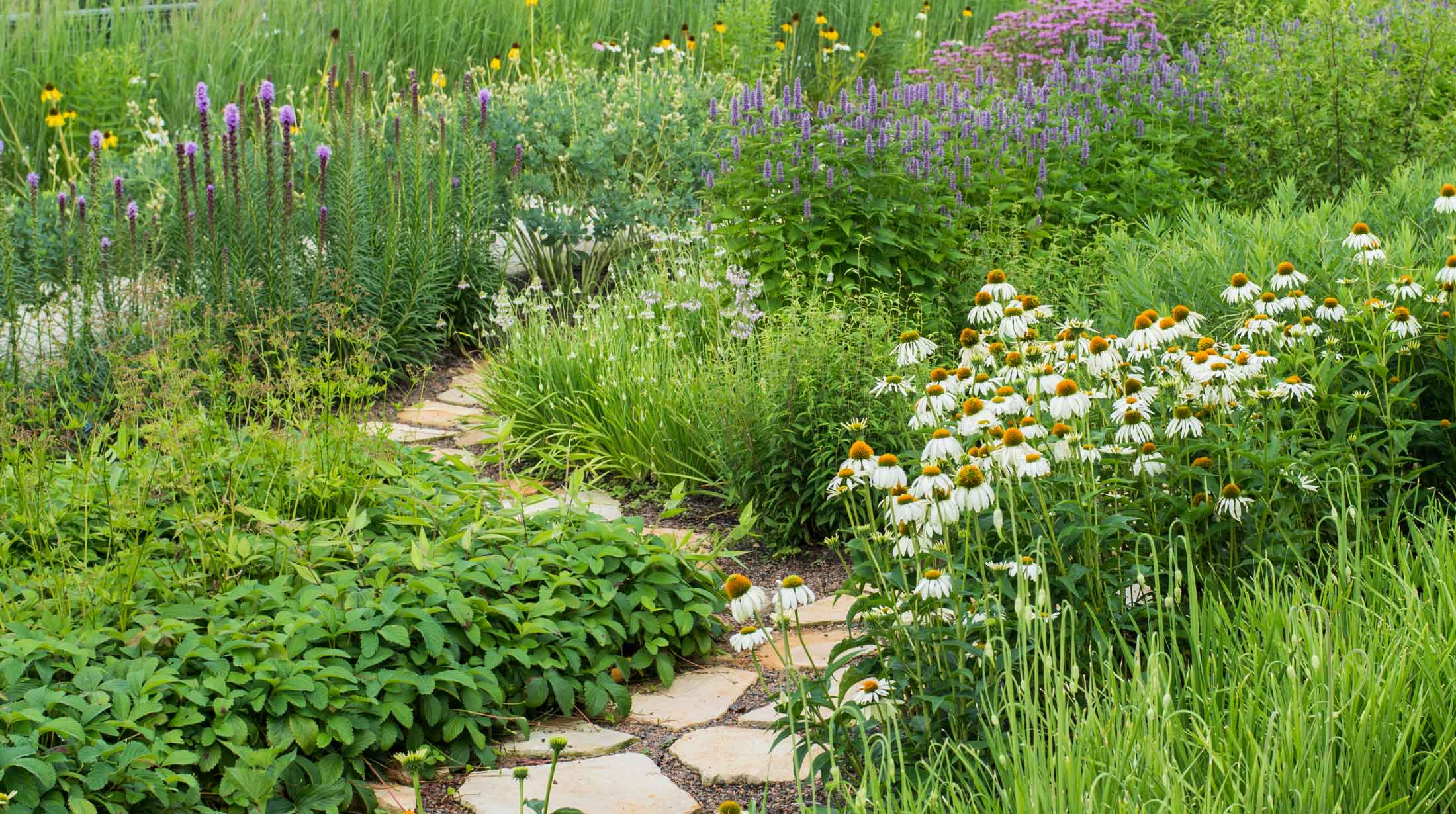 phipps safe lawn and landscaping phipps conservatory and