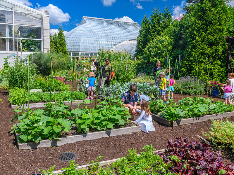 Edible Garden at Phipps Conservatory