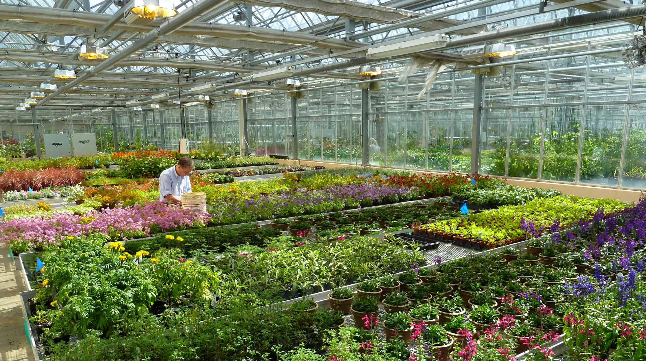 Production Greenhouse Phipps Conservatory And Botanical Gardens