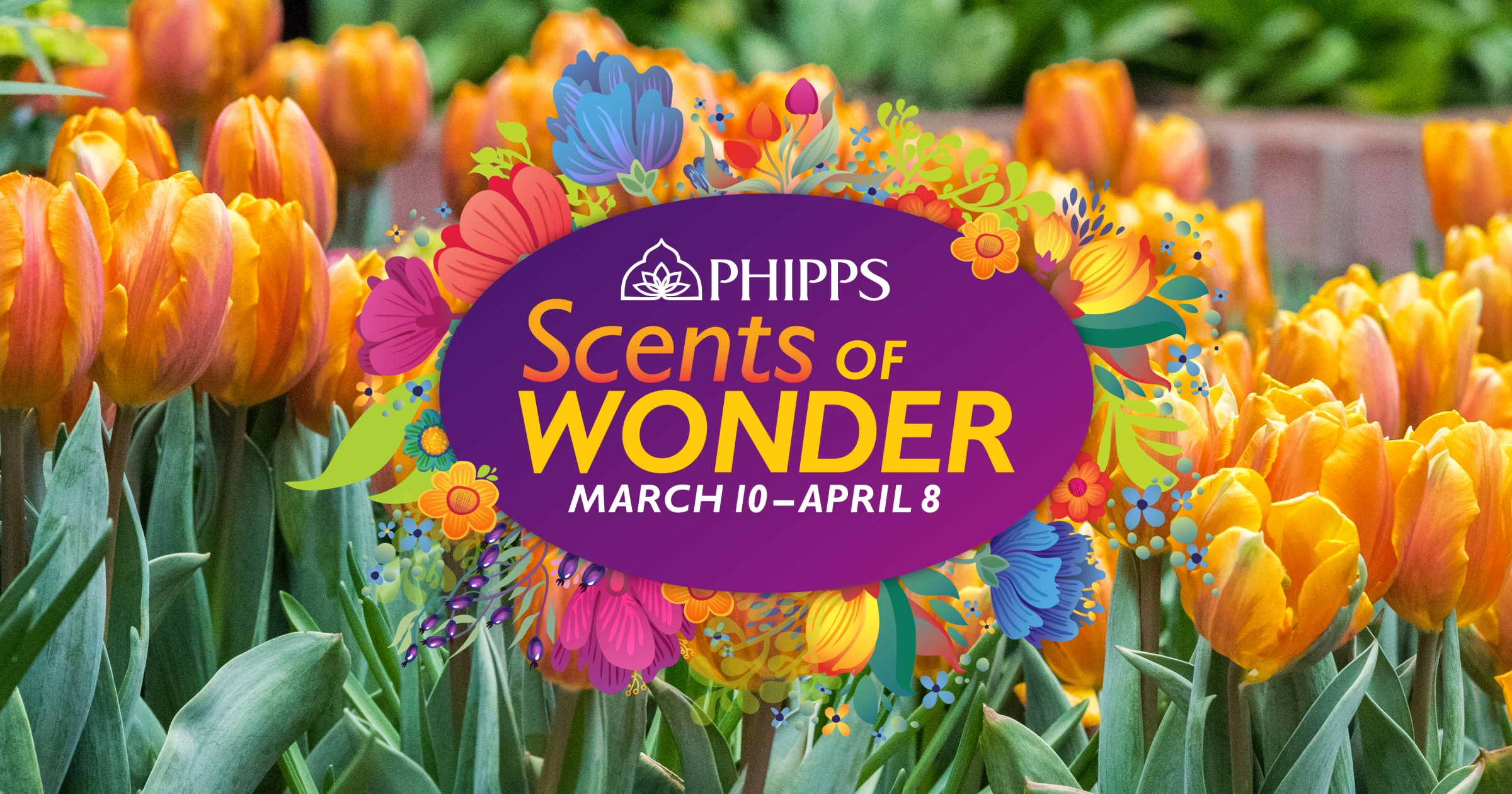Get Nose To Petal At Phipps Conservatorys New Spring Flower Show