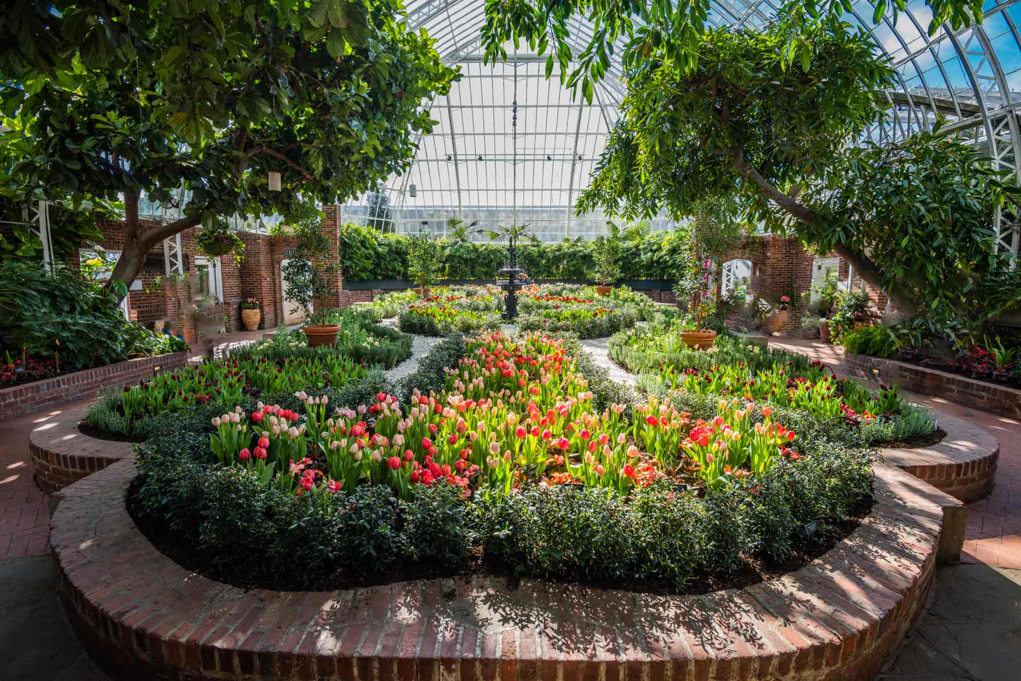 Spring flower show scents of wonder phipps conservatory and buy tickets online mightylinksfo