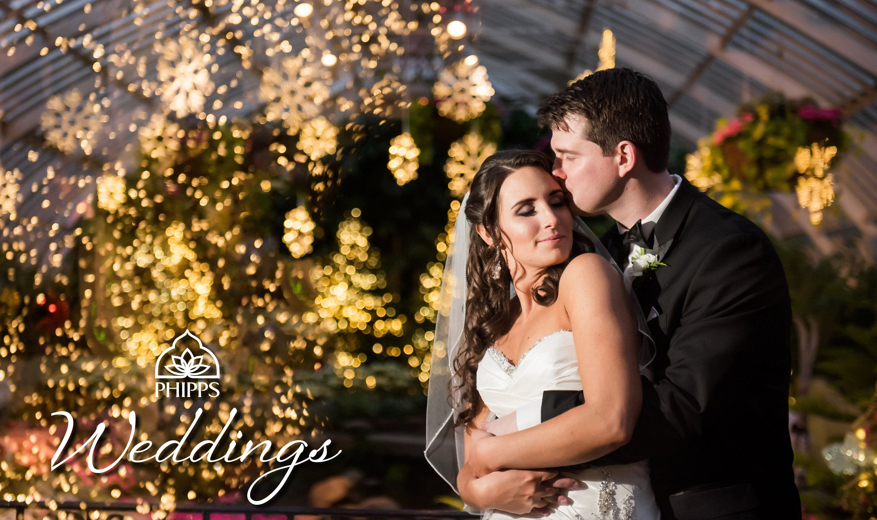 Engagement Season is in Full Bloom at Phipps Conservatory