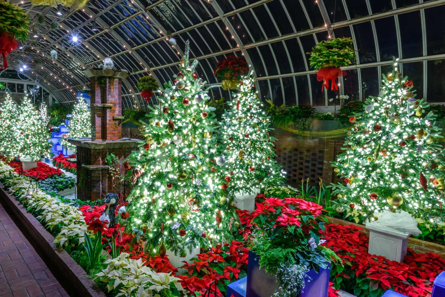 Winter Flower Show And Light Garden: Holiday Magic