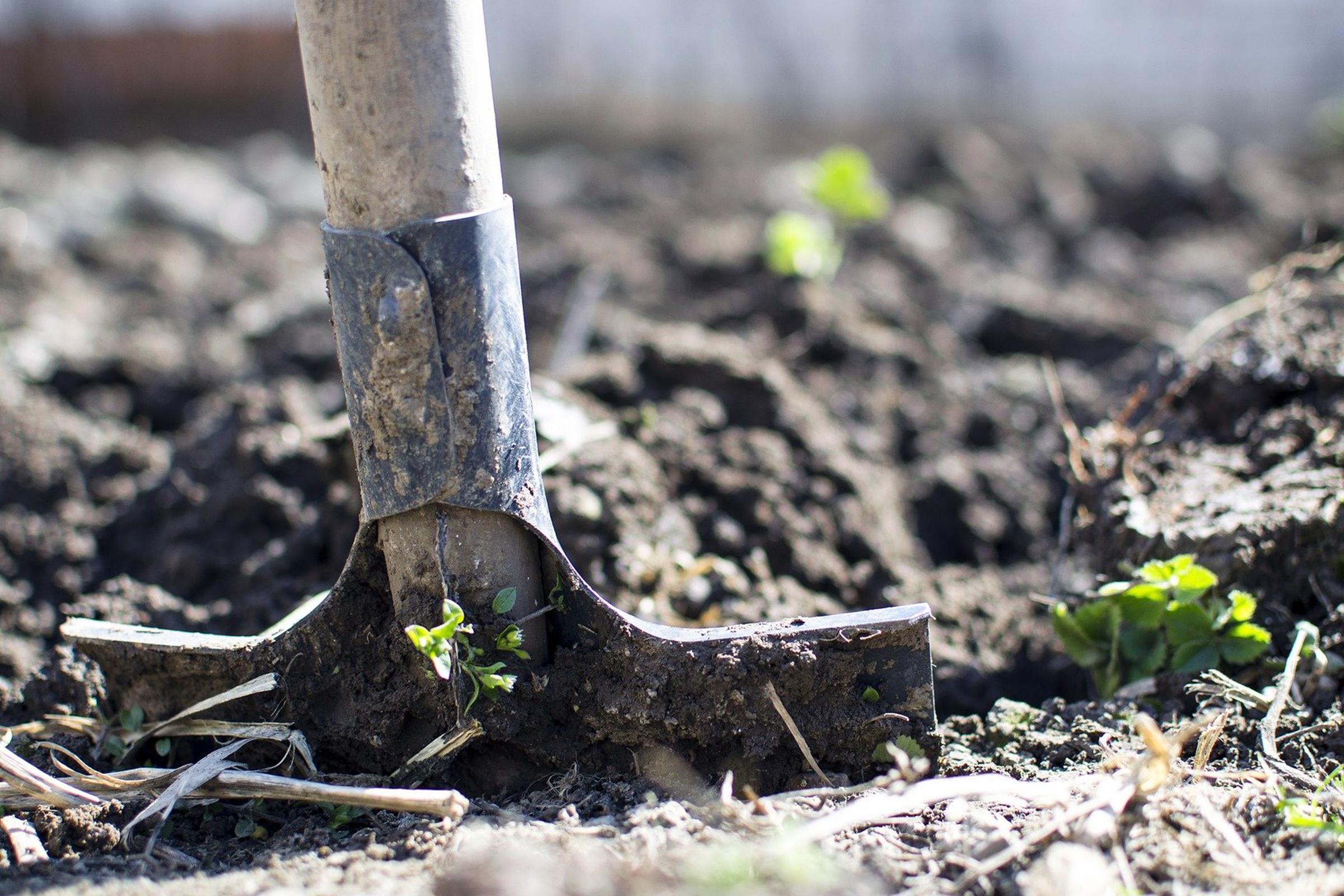 photo of shovel in soil