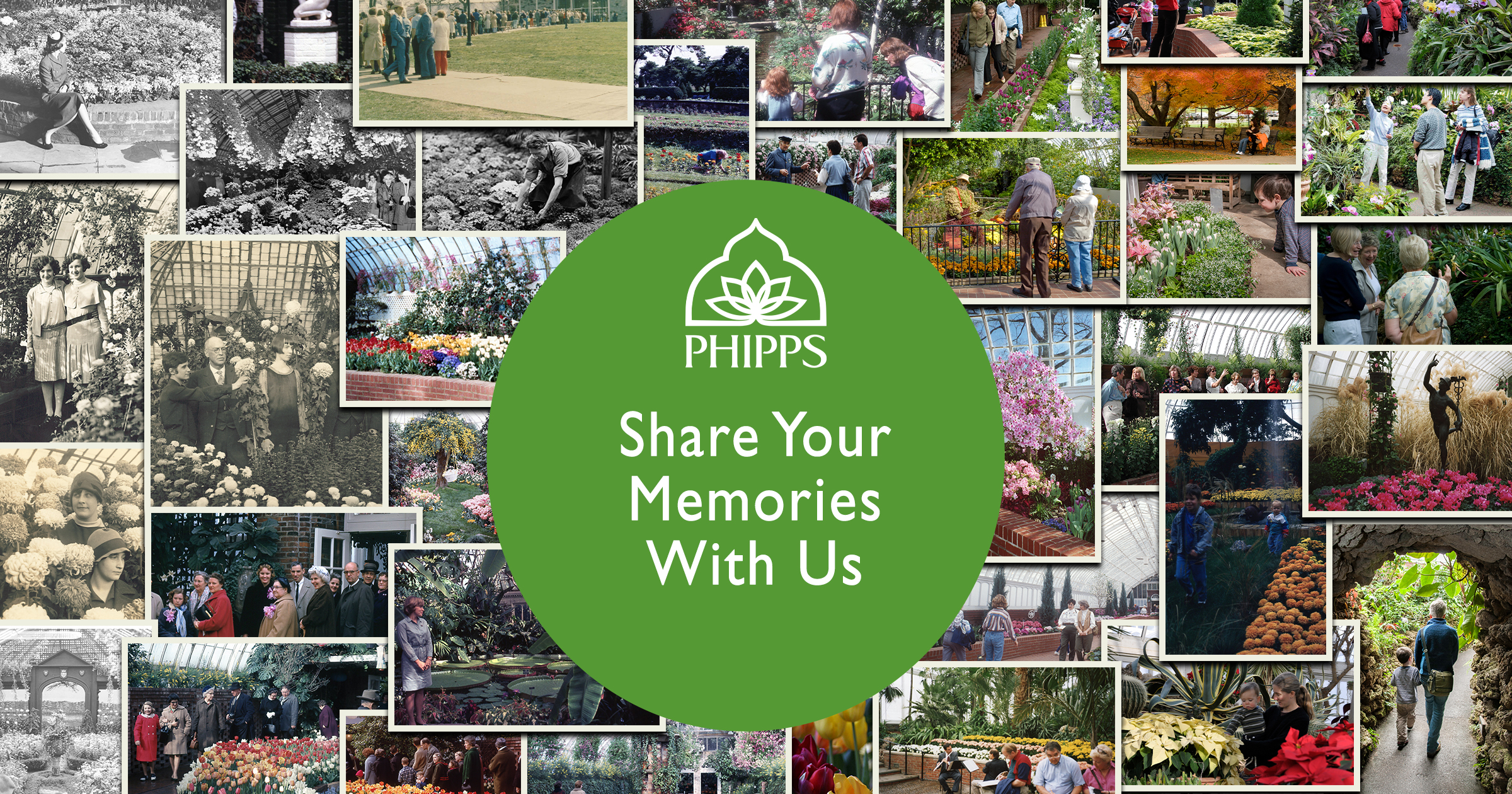 Share Your Memories With Us