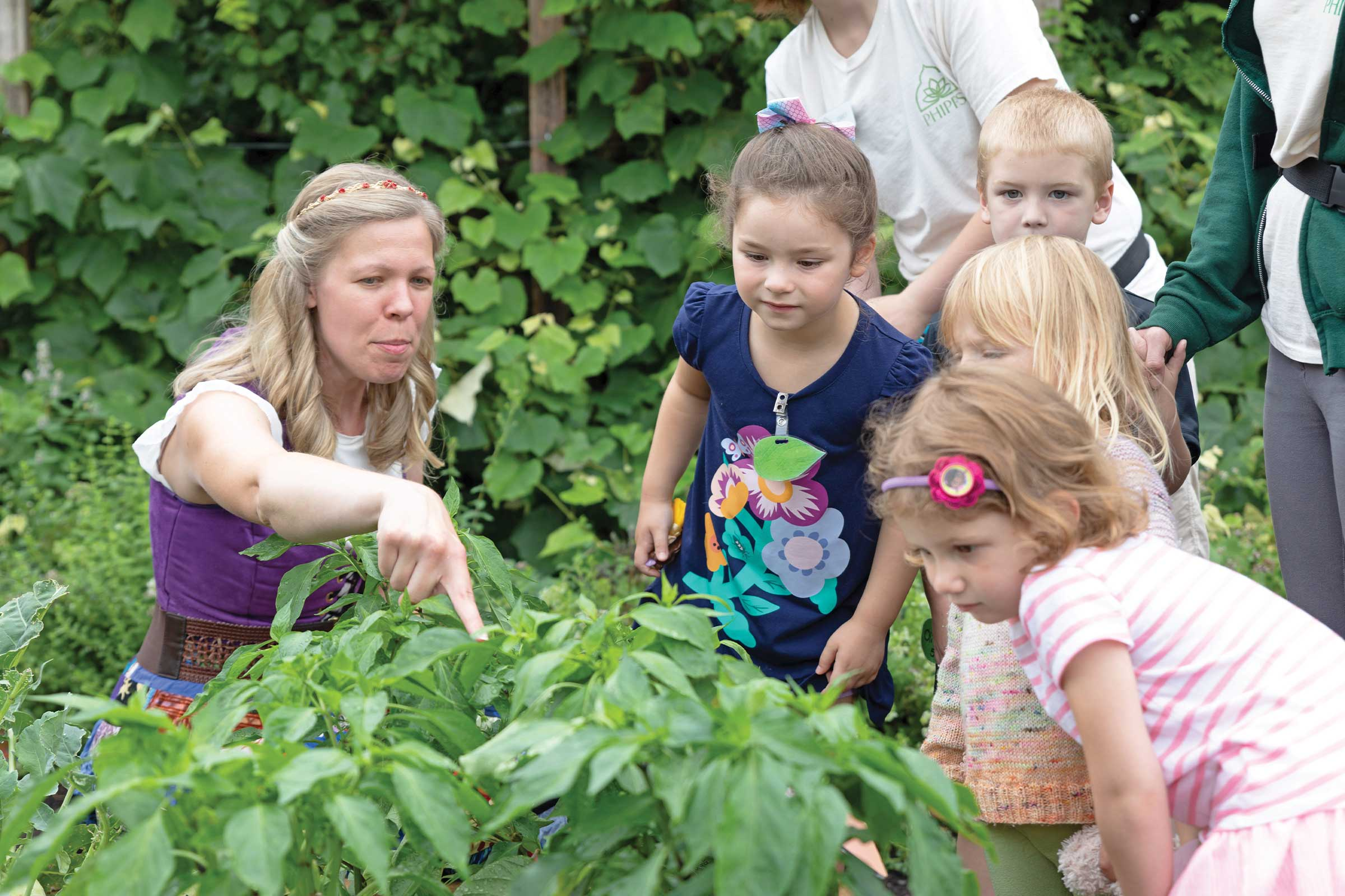 Teaching children about pollinators