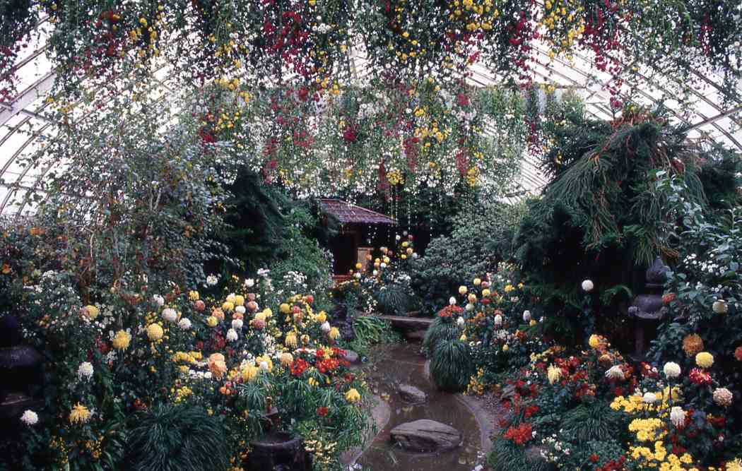 Fall Flower Show 1988: In Celebration of America