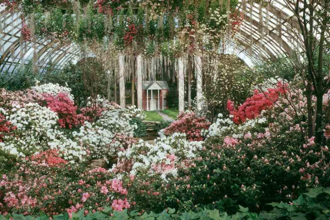 Spring Flower Show 1955: Wearing White for Eastertide