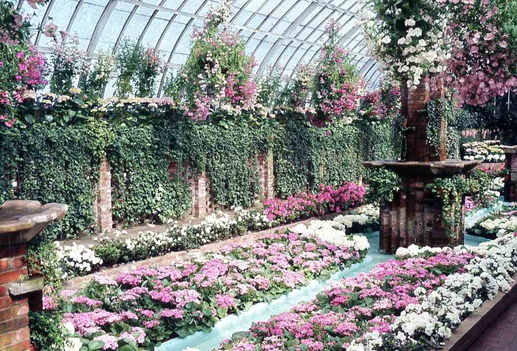 Spring flower show 1967 phipps conservatory and botanical gardens spring flower show 1967 mightylinksfo
