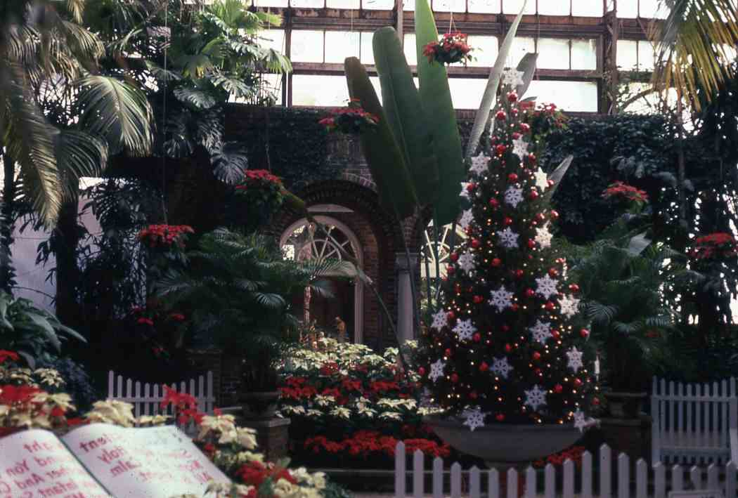 Winter Flower Show 1975: Country Christmas