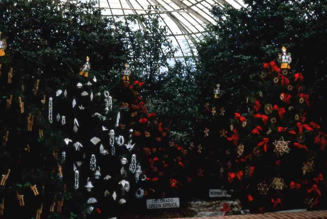Winter Flower Show 1985