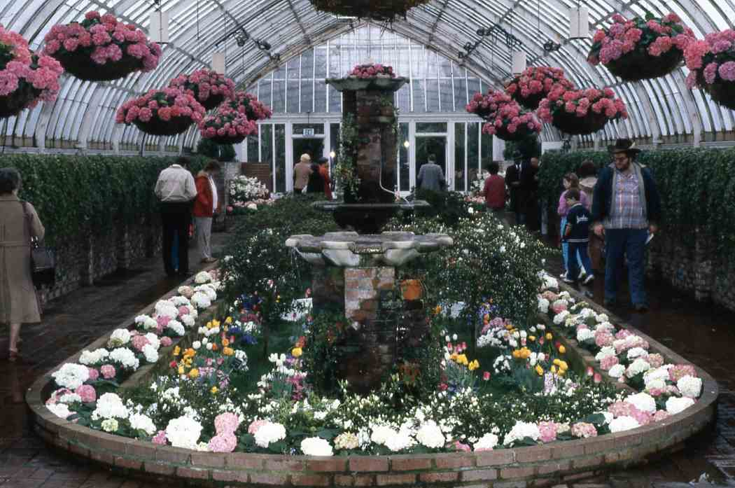 Spring Flower Show 1986: The Enchanted Forest