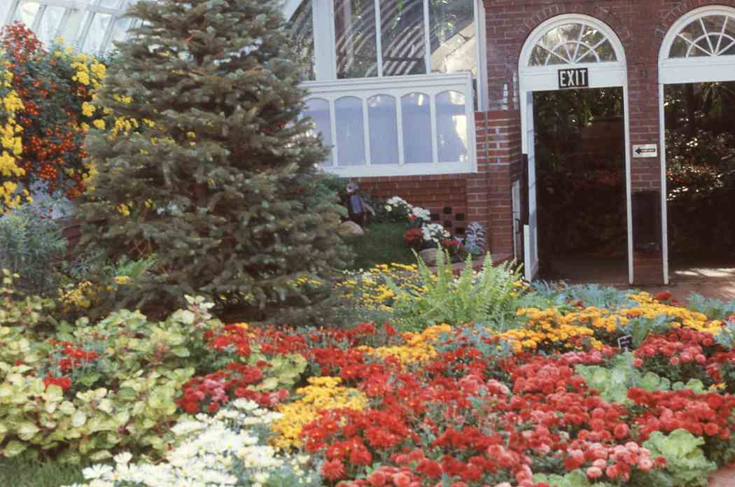 Fall Flower Show 1990: Lions and Tigers and Bears, Oh My!