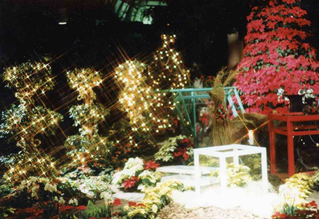 Winter Flower Show 1990: Presents Under Glass
