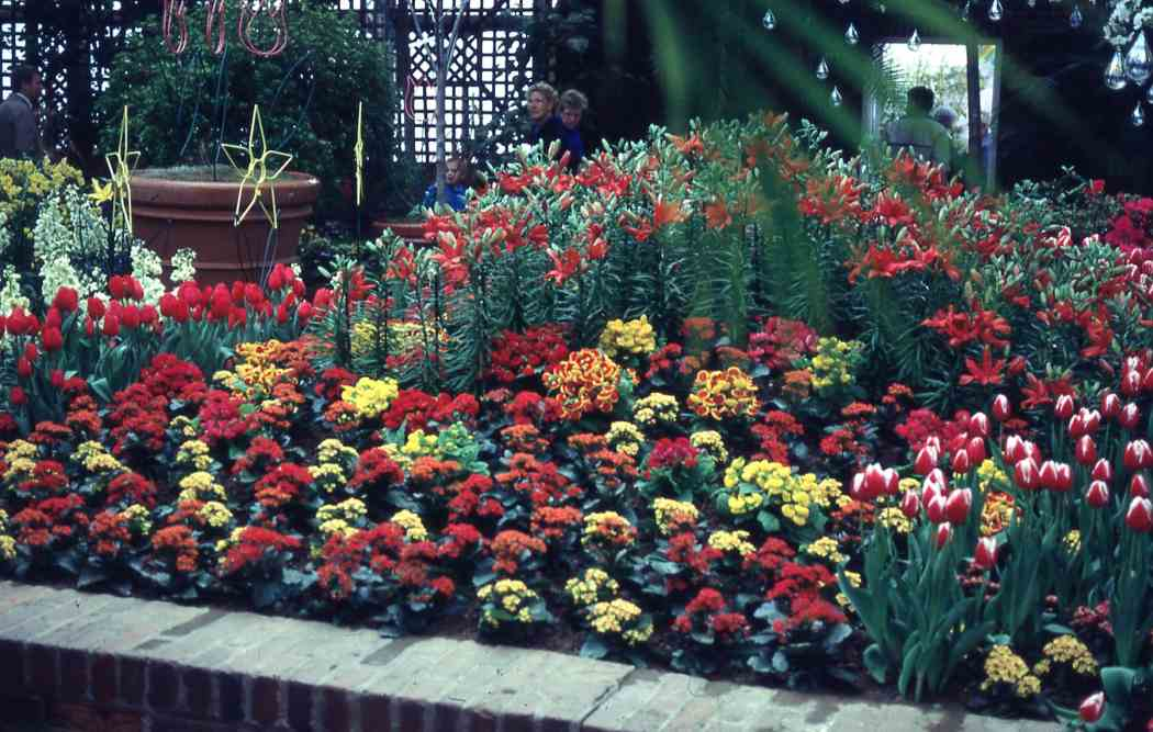 Spring Flower Show 1991: Flowers and Showers