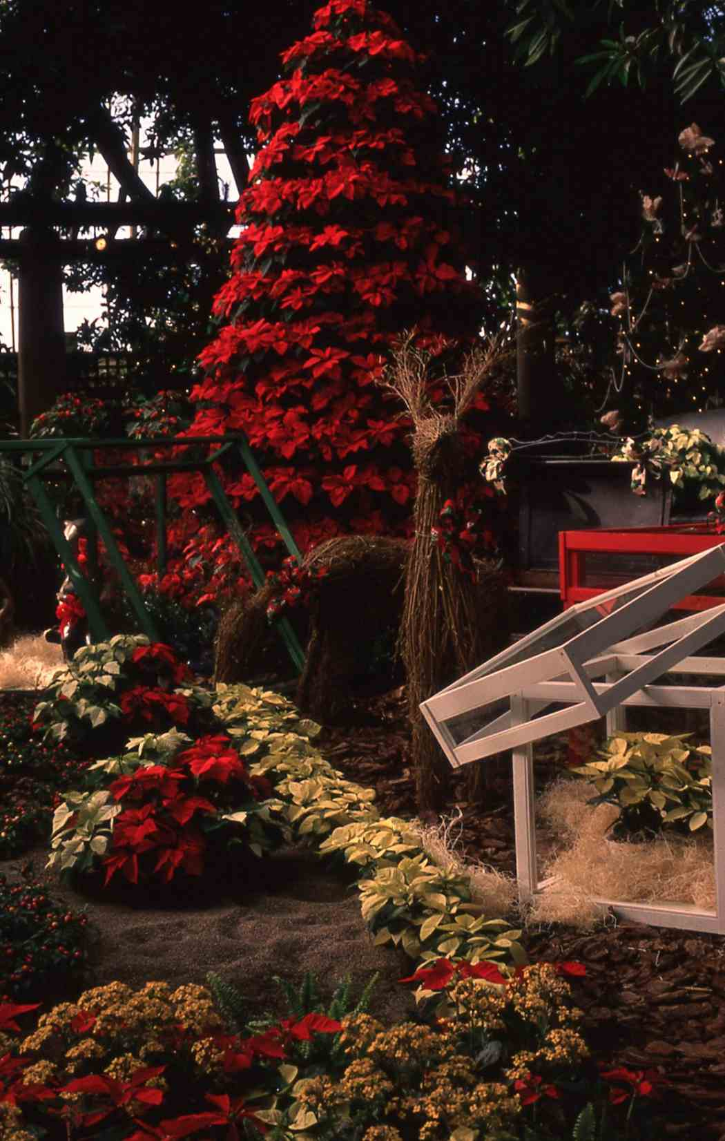 Winter Flower Show 1991: Spirits of Giving