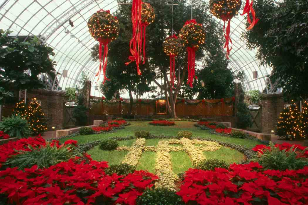 Winter Flower Show 1993