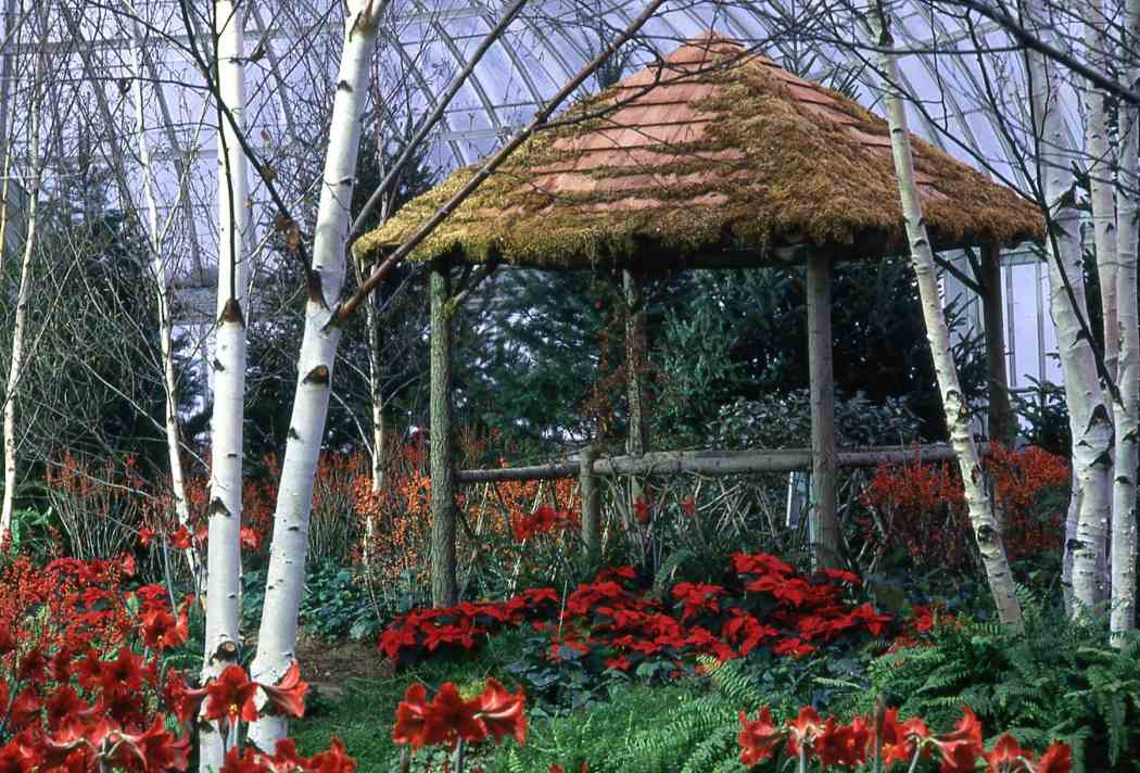 Winter Flower Show 1994