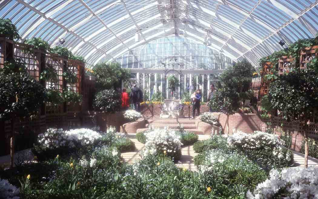Spring Flower Show 1996: A Symphony of Color