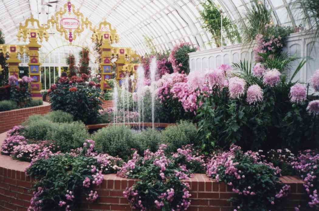Fall Flower Show 1997: A Carnival of Color