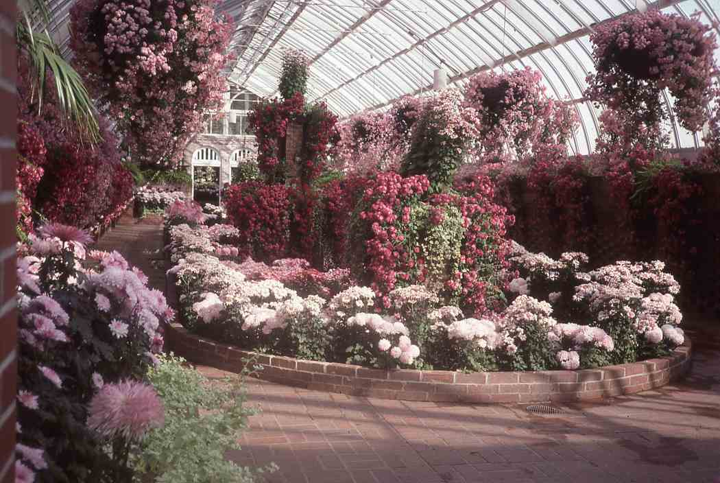 Fall Flower Show 1999: A Walk Down Memory Lane