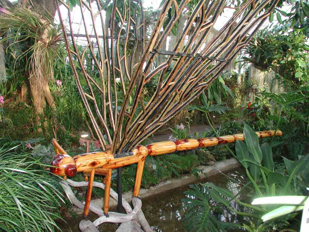David Rogers\' Big Bugs   Phipps Conservatory and Botanical Gardens ...