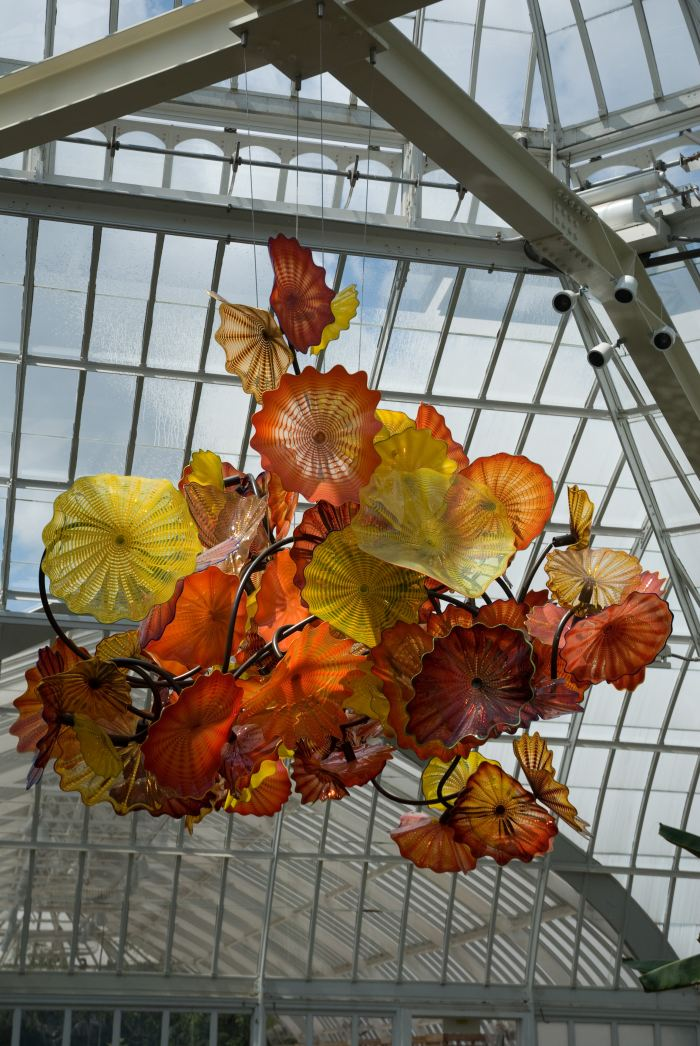 Chihuly At Phipps Gardens And Glass Phipps Conservatory