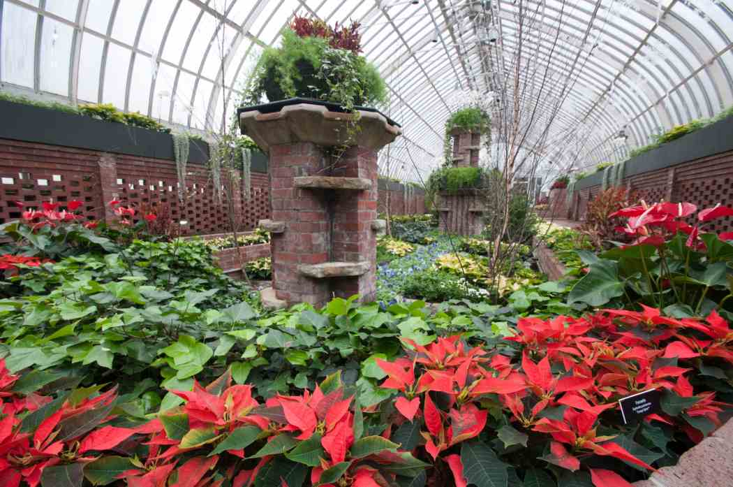 Winter Flower Show 2011: The Nutcracker — A Fresh Arrangement
