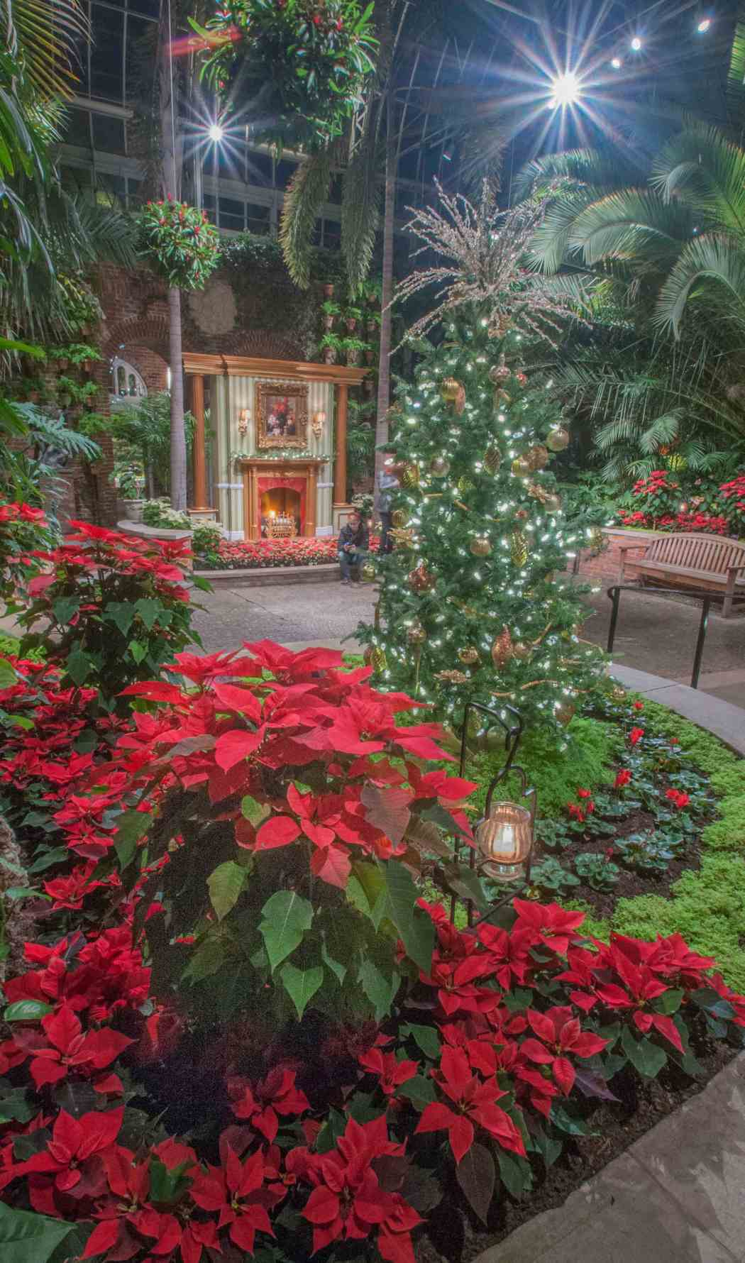 Winter Flower Show and Light Garden 2012: Come Home for the Holidays