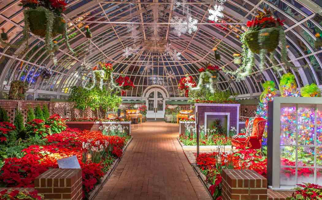 Winter Flower Show and Light Garden 2014: Winter Wonderland