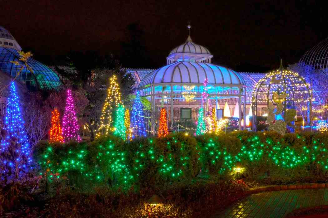 Winter Flower Show and Light Garden 2015: Deck the Halls