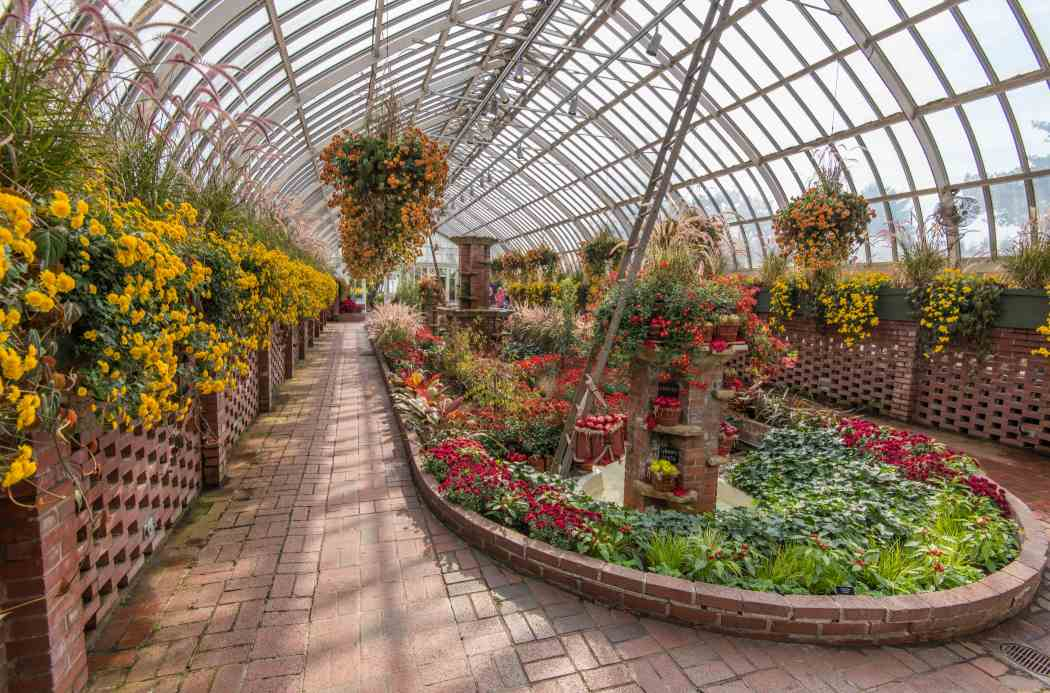 Fall Flower Show 2016: Bask in Nature's Bounty