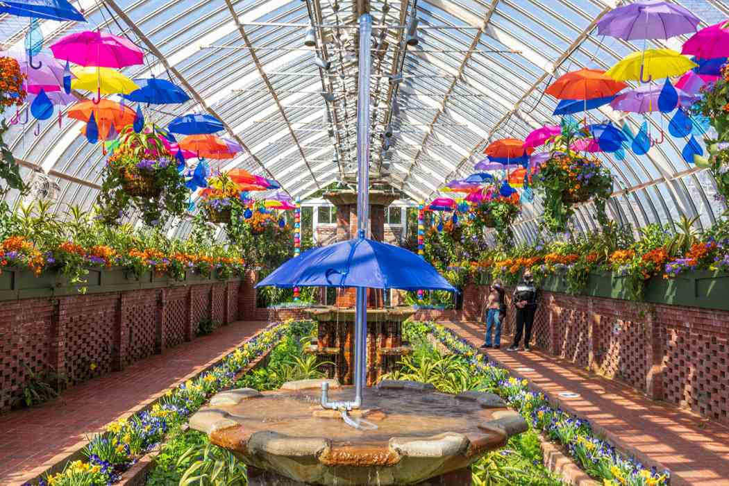 Spring Flower Show 2021: Canopy of Color