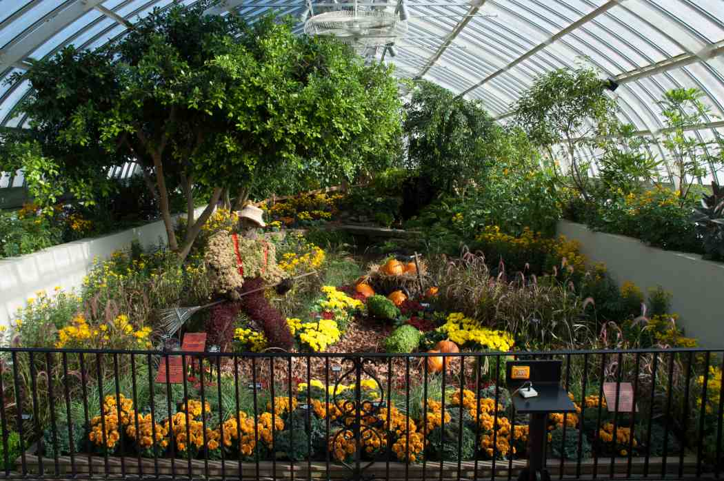 Fall Flower Show 2004: Colors of the Harvest
