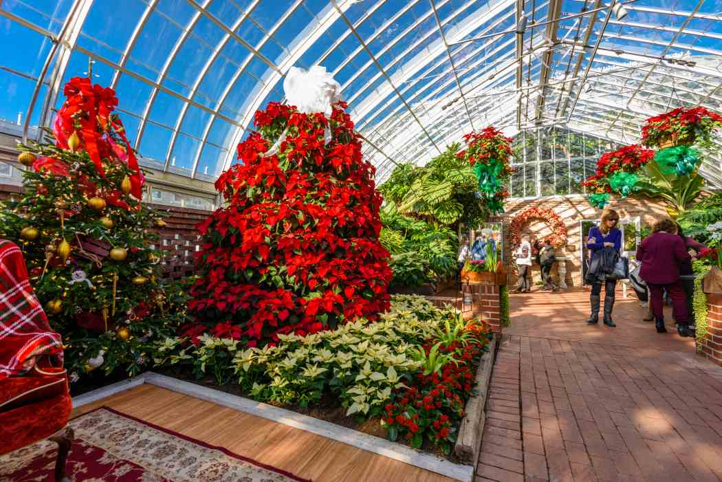 Winter Flower Show and Light Garden 2017: Holiday Magic!