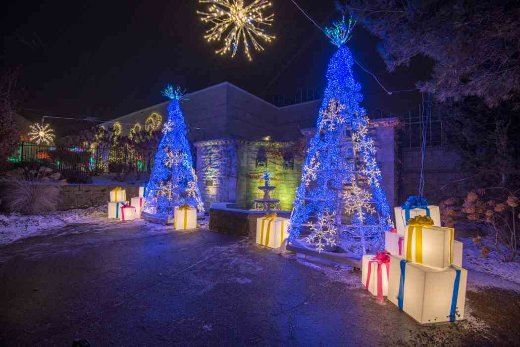 Winter Flower Show And Light Garden 2017 Holiday Magic