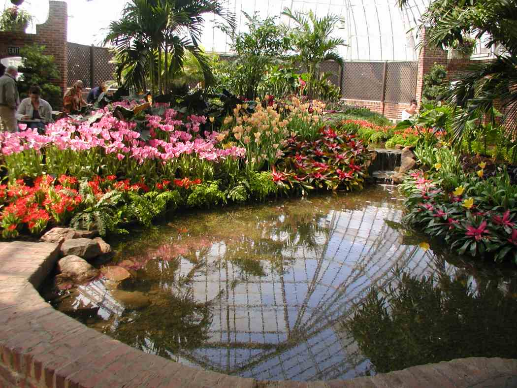 Spring Flower Show 2006: In the Tropics