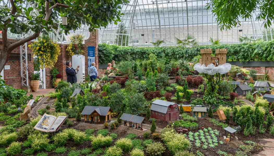 Fall Flower Show 2015: Kiku-No-Hana