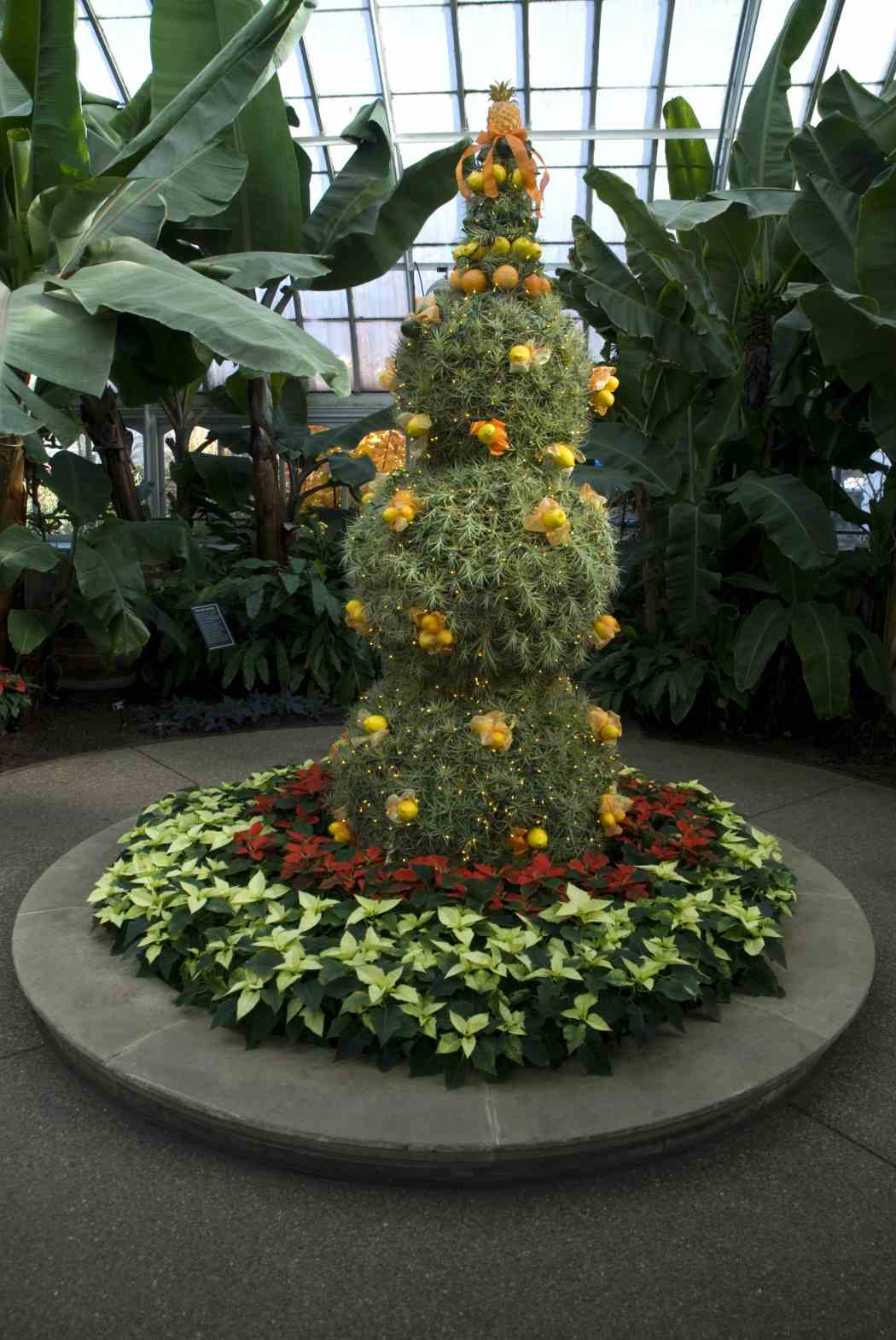 Winter Flower Show 2006: Shades of the Season