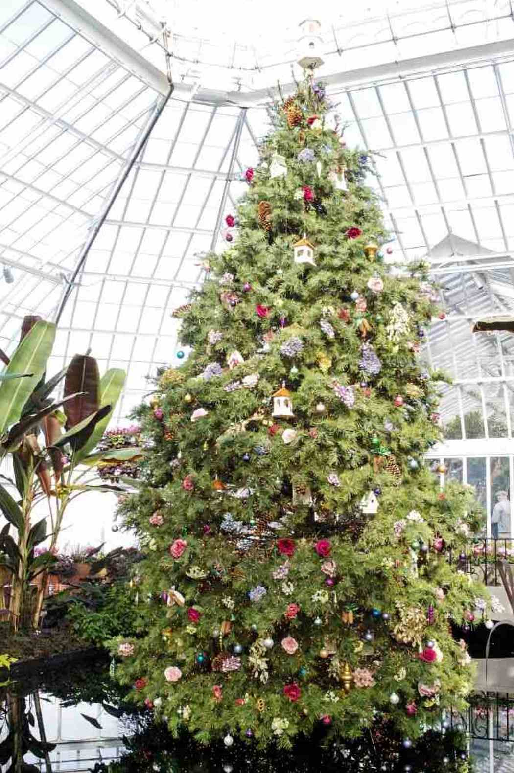 Winter Flower Show 2004: Nature's Holiday