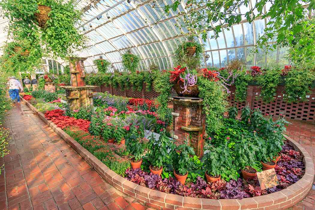 Fall Flower Show 2018: 125 Years of Wonder