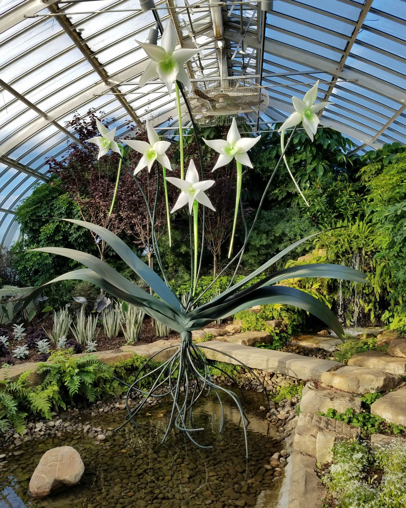 Sculpted glass Darwin orchids by artist Jason Gamrath are seen in Phipps' East Room.