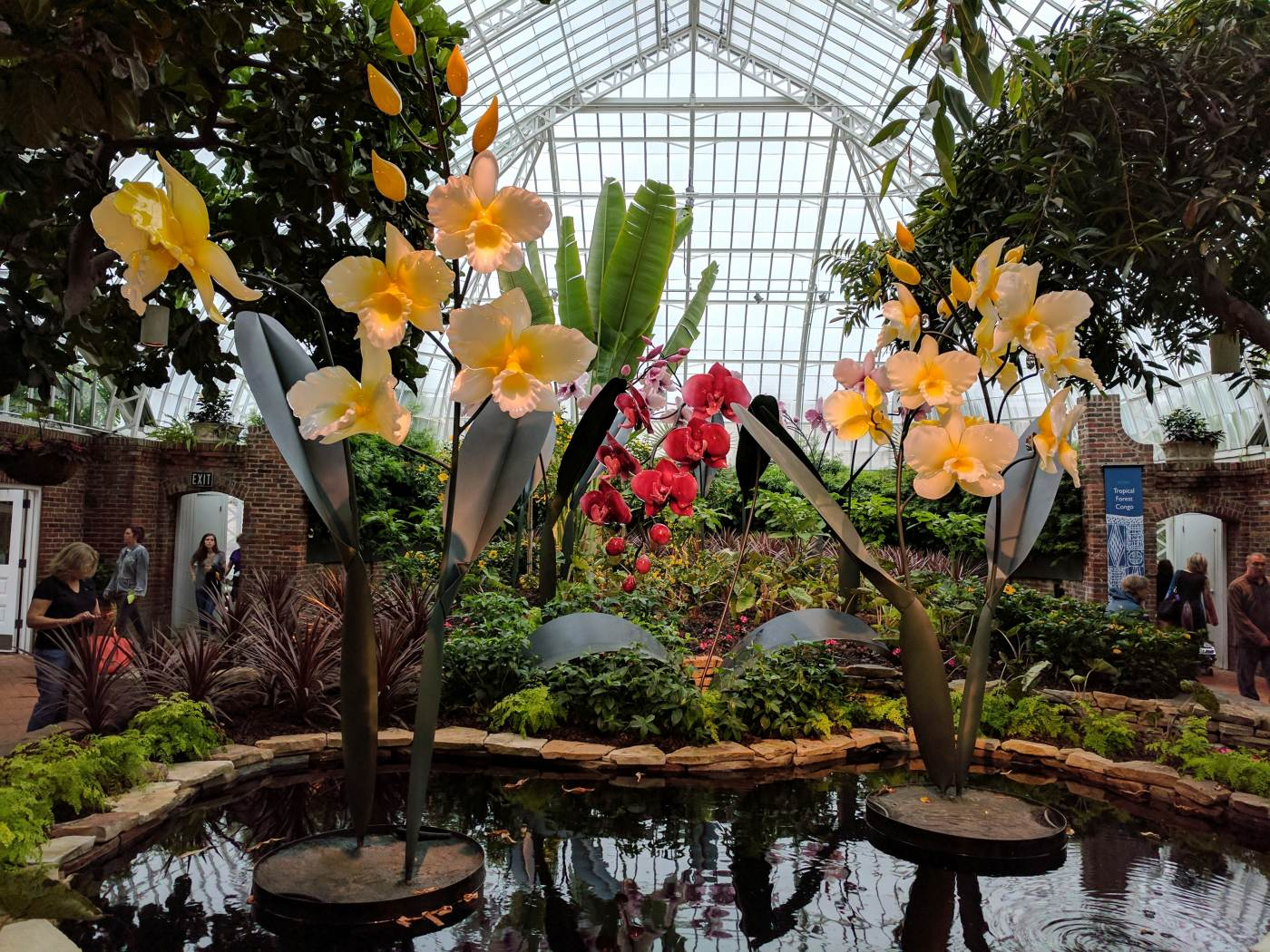 Sculpted glass orchids by artist Jason Gamrath are seen in Phipps' South Conservatory.