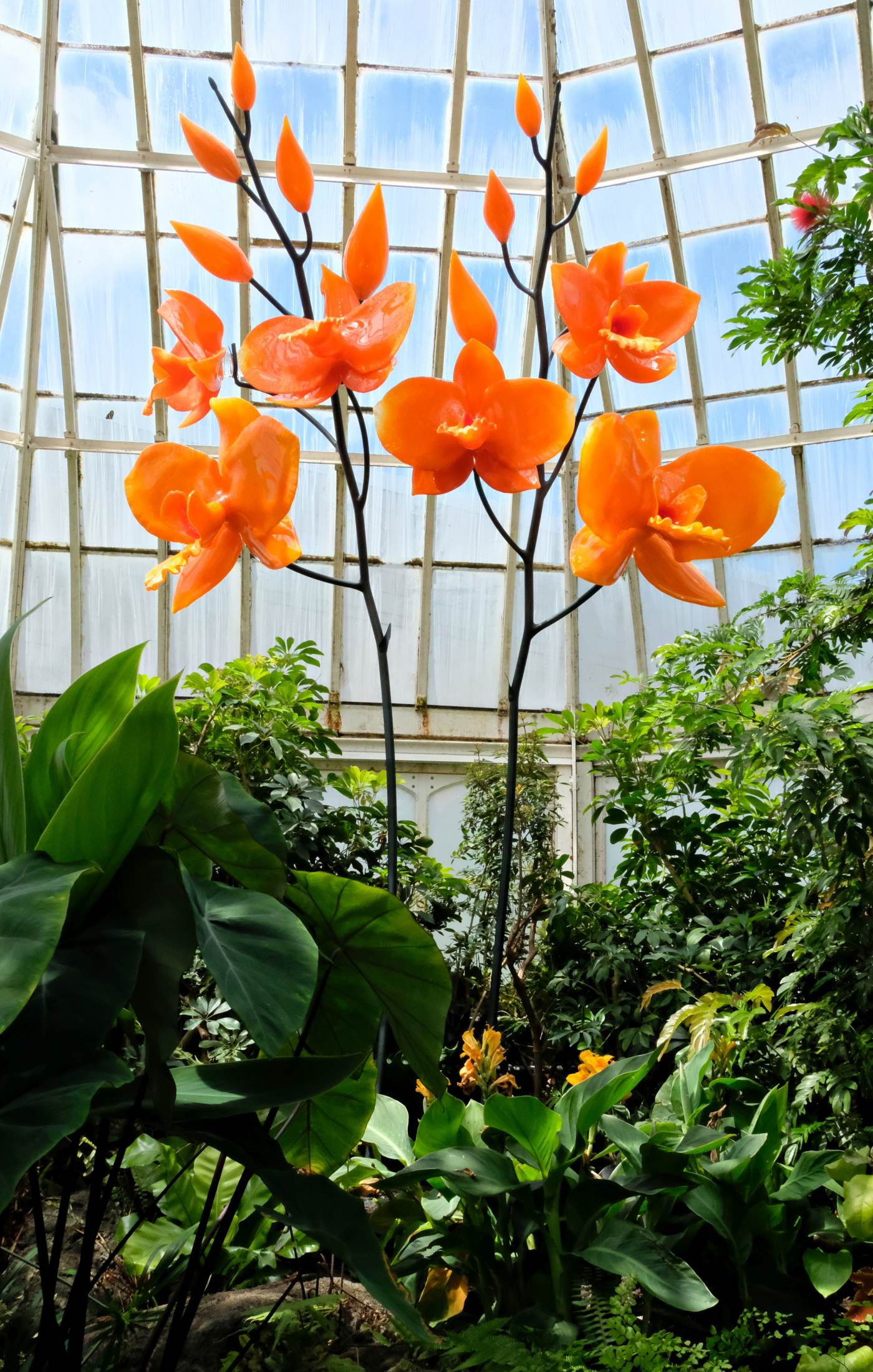 Sculpted glass orchids by artist Jason Gamrath are seen in Phipps' Stove Room.