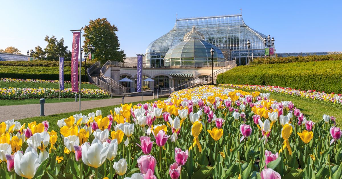 Exhibits and Events   Phipps Conservatory and Botanical
