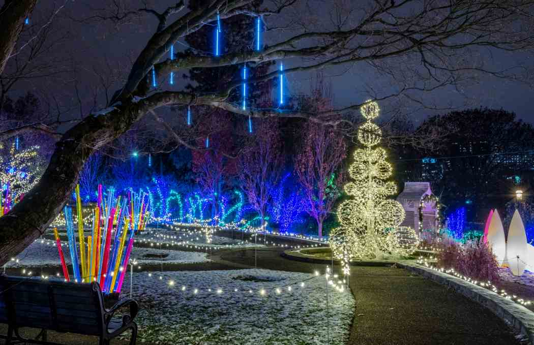 Last Chance Holiday Magic Let It Glow Phipps
