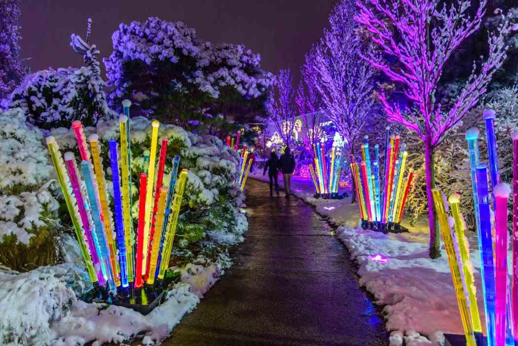 Garden Lighting Design Night